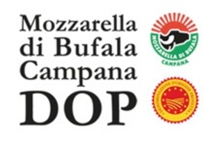 mozzarella-di-bufala-campana-dop-logo_460x460