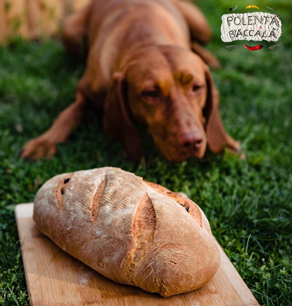 bread_hazi_kenyer_2