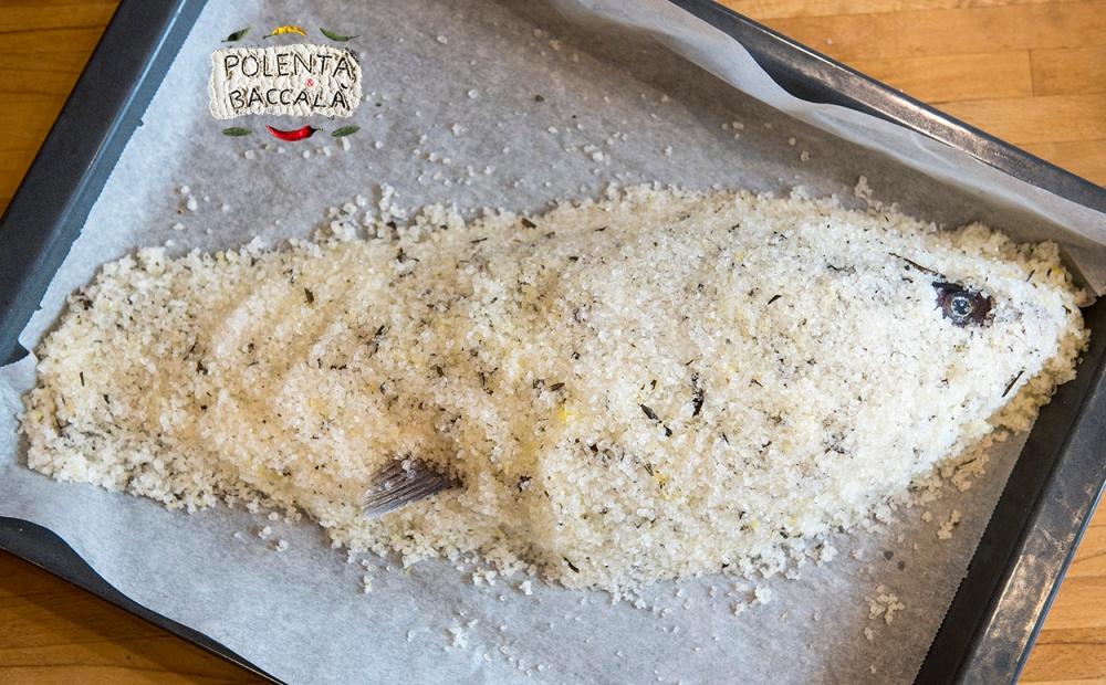 salt_crust_2